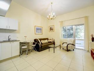 One bedroom apartment near the sea - Tel Aviv vacation rentals