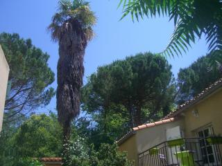 Le Petit Jardin Residence