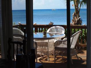 Ocean & Beach Front Hideaway - West Bay vacation rentals