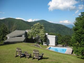 Rustic retreat w/pool 1 mi. to Smoky Mtn Ntl Park - Pisgah Forest vacation rentals