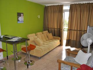 Modern 1 bedroom apartment - Playa Del Ingles, GC - Costa Meloneras vacation rentals