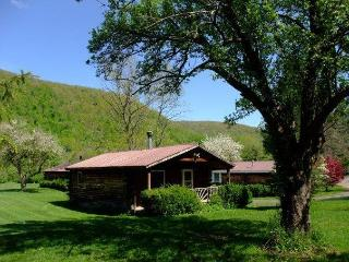Cold Spring Lodge - Three Bedroom Catskills Cabin - Big Indian vacation rentals