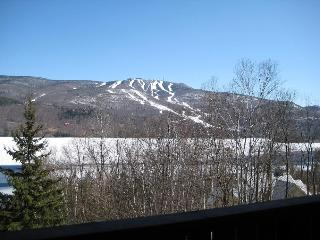 Nicely Priced 3BR 3BA on Lake with Stunning View - Mont Tremblant vacation rentals