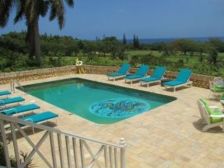 PARADISE TEU - 83673 - 3 BED VILLA | PRETTY | PRIVATE RETREAT | SPECTACULAR VIEWS - MONTEGO BAY - Montego Bay vacation rentals