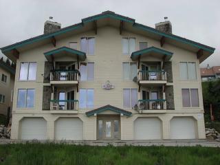 Schweitzer Ski-in/out condo 3bed/3bath sleeps 8 - Sandpoint vacation rentals