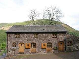Trwyn Tal - Brecon Beacons National Park vacation rentals