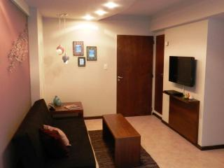1 Bedroom apartment, Excellent location Bariloche! - San Carlos de Bariloche vacation rentals