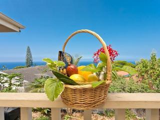 Wild women of the Sea rm Breakfast Supplies - Kailua-Kona vacation rentals