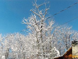 God's Gift 2 bed/2 bath cabin view of Mt LeConte - Gatlinburg vacation rentals