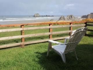 Ocean Vista The Cottage, slps 6 & a Studio slps 2 - Bandon vacation rentals