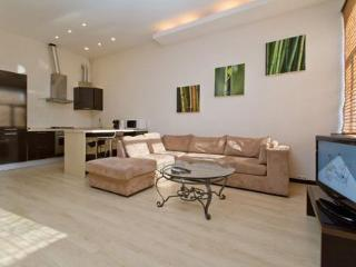 Apartment in  Kiev on 23 Krasnoarmeyskaya str. - Kiev vacation rentals