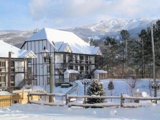 Pool, beach, tennis, watercraft, walk to village! - Mont Tremblant vacation rentals