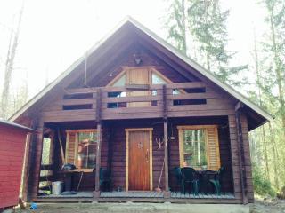 TRADITIONAL FINNISH LOG CABIN - Kuru vacation rentals