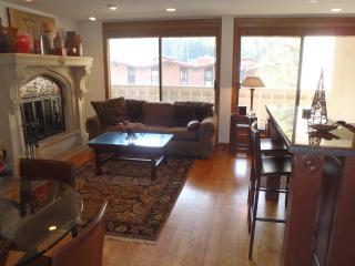 Luxury 2 bedroom condo - Vail vacation rentals