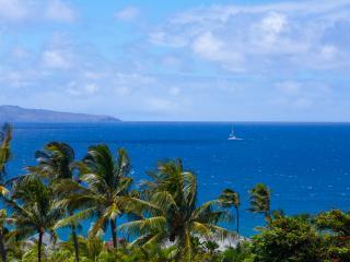 A Fabulous Kapalua Ocean View Villa - Lahaina vacation rentals