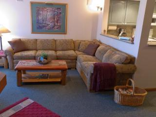 Sunpath 12, 2 bdrm pet-friendly, private hot tub - Whistler vacation rentals