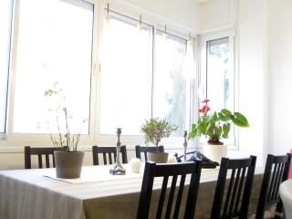 Trendy and Luxurious Apartment in Jerusalem - Jerusalem vacation rentals