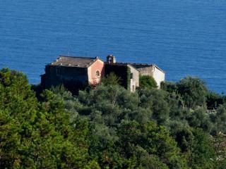 Villa Le Cinque Terre - Monterosso Grana vacation rentals