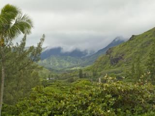 One bedroom on secluded sandy beach: no added fees - Hauula vacation rentals
