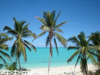 2 Luxury Apartments for 2-4 on Exuma's Best Beach! - Great Exuma vacation rentals