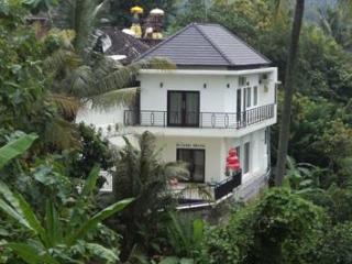 Luxury villa with staff and pool north Bali - Lovina vacation rentals