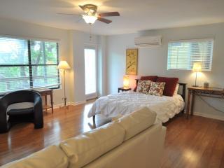 Barton View - Unit B - 3/2.5 w/ great sunset deck! - Austin vacation rentals