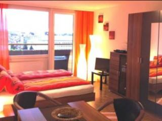 Beautiful Salzburg Studio Apartment - Saint Koloman vacation rentals