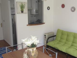 Nice Neighbourhood appartment (flat) in Santiago - Puyuhuapi vacation rentals