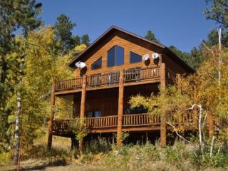 Westwinds Lodge - Lead vacation rentals