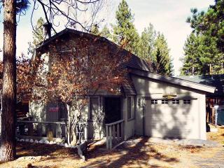 Bear Necessity Cabin - Big Bear Lake vacation rentals