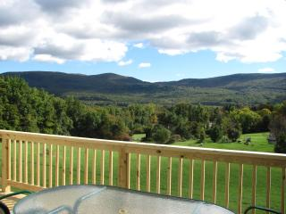 Private, new  3 bedroom, 3.5 baths on 3.8 acre - Manchester vacation rentals