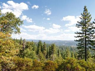 Nestled in the Sierra pines near Big Trees - Arnold vacation rentals