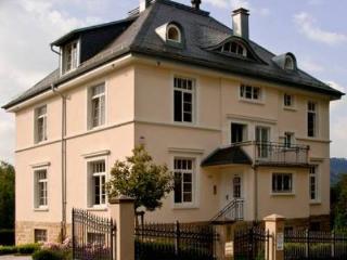 LLAG Luxury Vacation Apartment in Baden Baden - 861 sqft, quiet, central, exclusive (# 3239) - Waldbronn vacation rentals