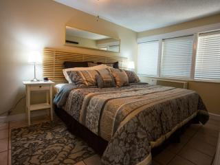 Sweet luxurious home near everything gr8 in Austin - Austin vacation rentals