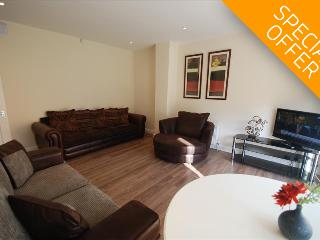 Fairfield Apartments - 2BR - Private Garden - Croydon - London vacation rentals