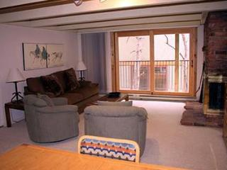 1 Bedroom/1 Bath Condo at Chateau Blanc- Unit 8 - Aspen vacation rentals