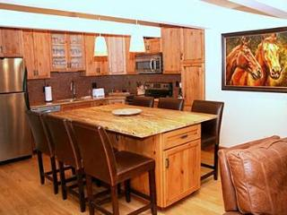 2 Bedroom/2 Bath Condo At Chateau Blanc- Unit 3 - Aspen vacation rentals
