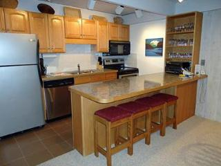 2 Bedroom/2 Bath Condo At Chateau Blanc- Unit 7 - Aspen vacation rentals