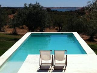 private country house Standing at Alqueva bay - Terena vacation rentals