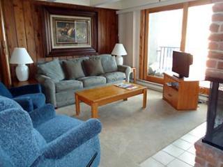 2 Bedroom/2 Bath Condo At Chateau Blanc- Unit 10 - Aspen vacation rentals