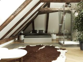 Royal Palace - Luxury Attic One Bedroom Apartment - Prague vacation rentals