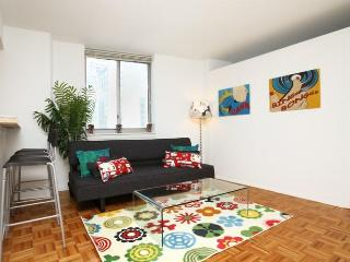 Great 2 BR Times Square Apartment - New York City vacation rentals