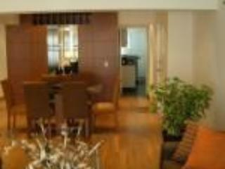Ocean View luxury apartment ,Avenida Colon 705 - Lima vacation rentals