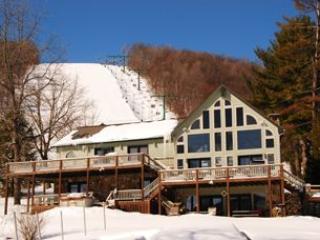 Lake Lift Lodge - McHenry vacation rentals