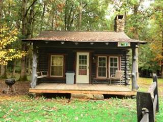 Swallow Falls Inn Cabin 1 - Western Maryland - Deep Creek Lake vacation rentals