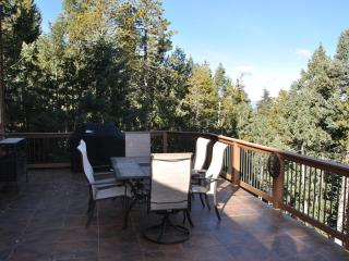 Ladybug Lodge, Mountain Home 13 mi from Red Rocks - Bailey vacation rentals