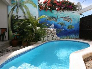 Island Love Shack...Casa Amor! - Cozumel vacation rentals