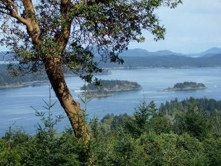 Allison Harbourview House - Stunning Ocean views - Salt Spring Island vacation rentals