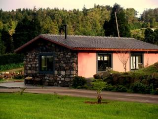 Little country cottage, quiet walk to golf SEEPS 3 - Funchal vacation rentals