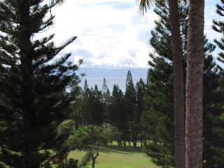 Kapalua Golf Villas  G14V3 - Kapalua vacation rentals